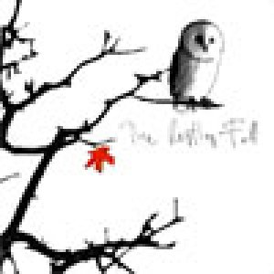 album The restless fall - Paolo Saporiti