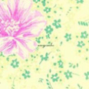 album S/t - Amycanbe