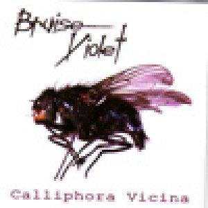 album Calliphora Vicina - Bruise Violet