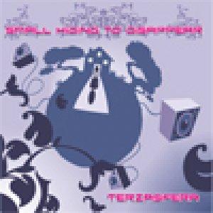 album Small Hiding to Disappear - Terzasfera