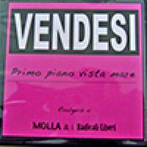 album Primo Piano Vista Mare - Molla & I Radicali Liberi