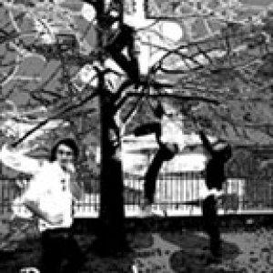 album Vestite a Festa - Przewalski