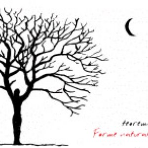 album Forme naturali - Teorema