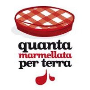 album Sono Stato Io - QuantaMarmellataPerTerra