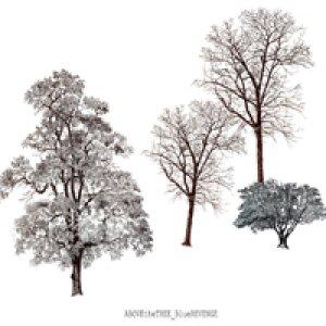 album Blue Revenge  - Above The Tree