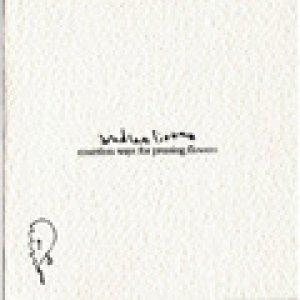 album Countless Ways For Pressing Flowers - Andrea Liuzza