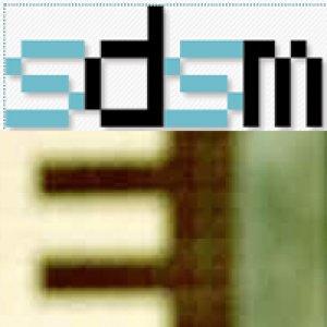album SDSM '08 - Le interviste - Split