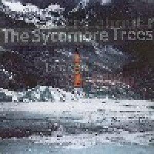 album Happiness - Sycamore Trees
