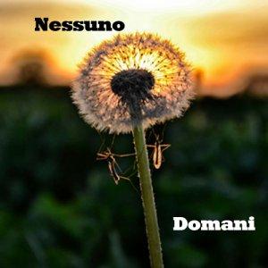 album Domani(strumentale) - Le Cose dei Licianni