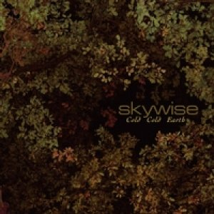 album Cold cold eatrh - Skywise