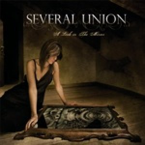 album A Look in the Mirror - Several Union