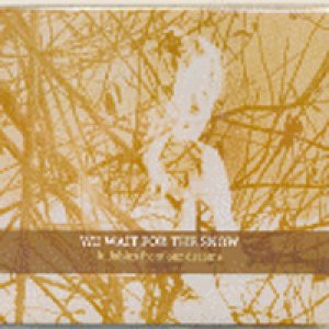 album Lullabies from our dreams - We Wait For The Snow