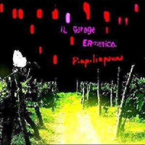 album Pinpilinpauxa - Il garage ermetico