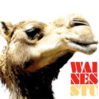 Copertina dell'album Stu, di Waines