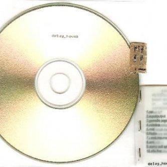 Copertina dell'album delay_house, di delay_house