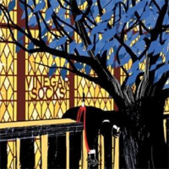 Copertina dell'album Vinegar Socks, di Vinegar Socks