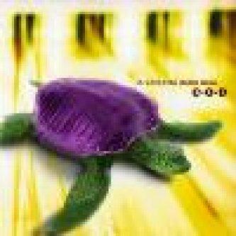 Copertina dell'album La velocità della luce, di c|o|d - Crack Opening Displacement (COD)