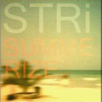 Copertina dell'album Summerize EP, di STRi