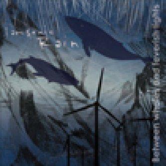 Copertina dell'album Between whales and feverish lights, di i am sonic rain