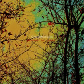 Copertina dell'album Moon In June/Superstition, di Chamberlain