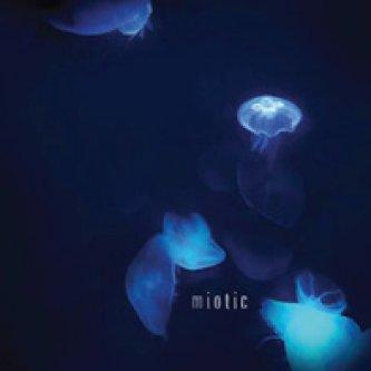 Copertina dell'album Miotic EP, di Miotic