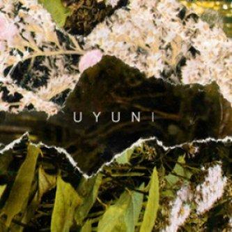 Copertina dell'album s/t, di uyuni