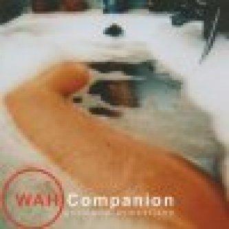 Copertina dell'album Anomalie domestiche, di Wah Companion