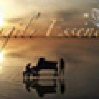 Copertina dell'album Fragile Essence, di Fragile Essence