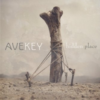 Copertina dell'album Hidden place, di Avekey