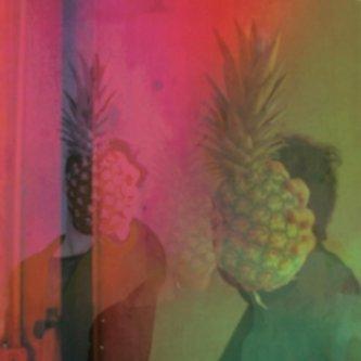 Copertina dell'album Stressed Desserts Blues, di Vernon Sélavy