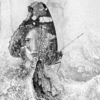 Copertina dell'album dagger moth, di Dagger Moth