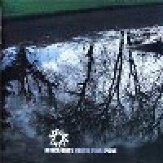 Copertina dell'album Mentre fuori piove, di Africa Unite
