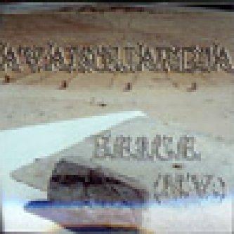 Copertina dell'album B.E.I.G.E. (NV), di Avanguardia