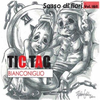 Copertina dell'album SASSO DI FIORI VOL I&II, di tic tac bianconiglio