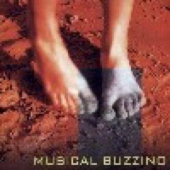 Copertina dell'album s/t, di Musical Buzzino (Lorenzo Corti)