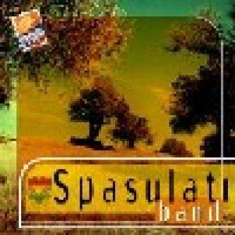 Copertina dell'album s/t, di Spasulati Band