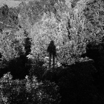 Copertina dell'album Background Story, di Panoram