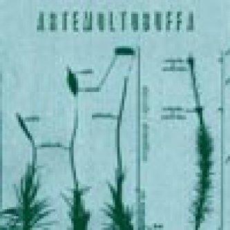 Copertina dell'album Stanotte/stamattina, di Alberto Muffato (artemoltobuffa)