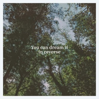 You Can Dream It In Reverse