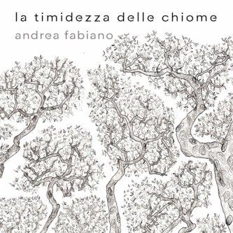Copertina dell'album La timidezza delle chiome, di Andrea Fabiano