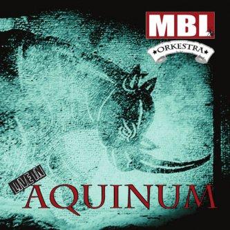 Copertina dell'album LIVE IN AQUINUM, di Musicisti Basso Lazio