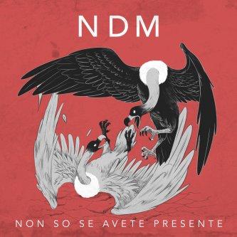 Copertina dell'album NON SO SE AVETE PRESENTE, di NDM