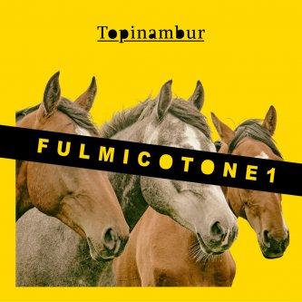 Fulmicotone 1
