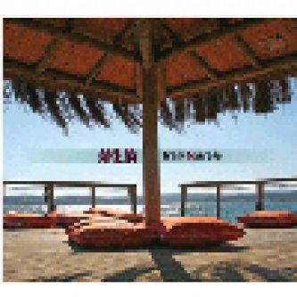 Copertina dell'album Train to areia, di Areia