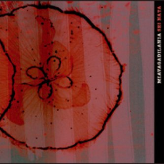 Copertina dell'album Sei nata EP, di Miavagadilania