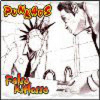Copertina dell'album Falso Riflesso, di Punkaos