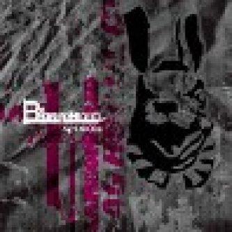 Copertina dell'album Agrodolce, di Bianconiglio