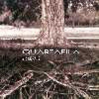 Copertina dell'album Viscerale, di Quartafila