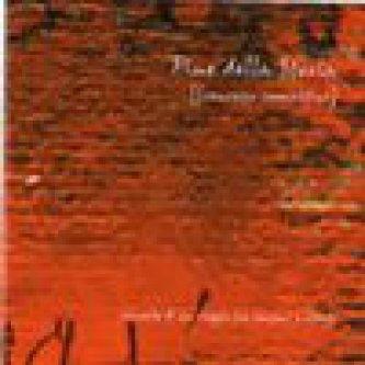 Copertina dell'album Fine della storia, di Francesco Camattini