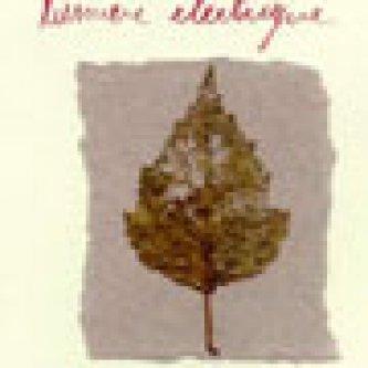 Copertina dell'album lumiere electrique, di Lumiere Electrique